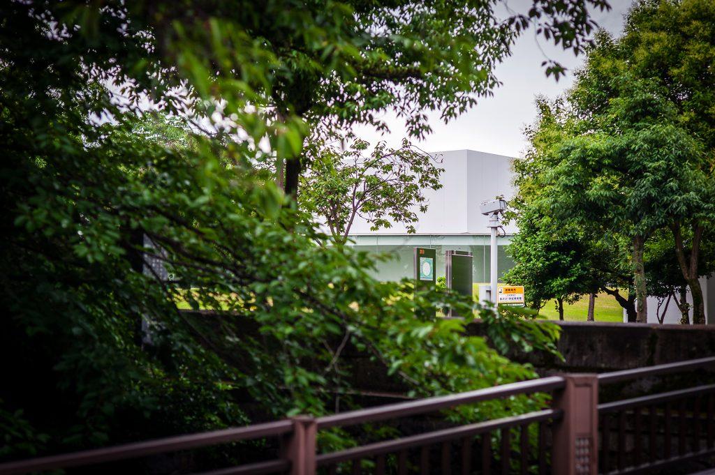 紫錦台中学校、城南中学校