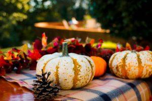 秋はお祭りの季節